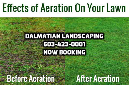DL-Aeration_booking
