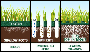 aeration-graphic