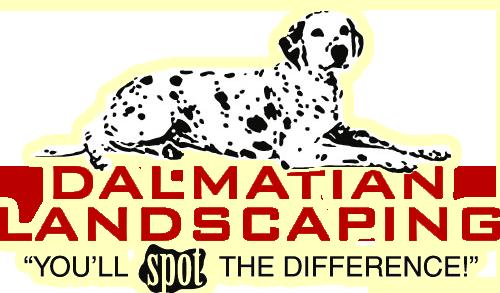 Dalmatian Landscaping